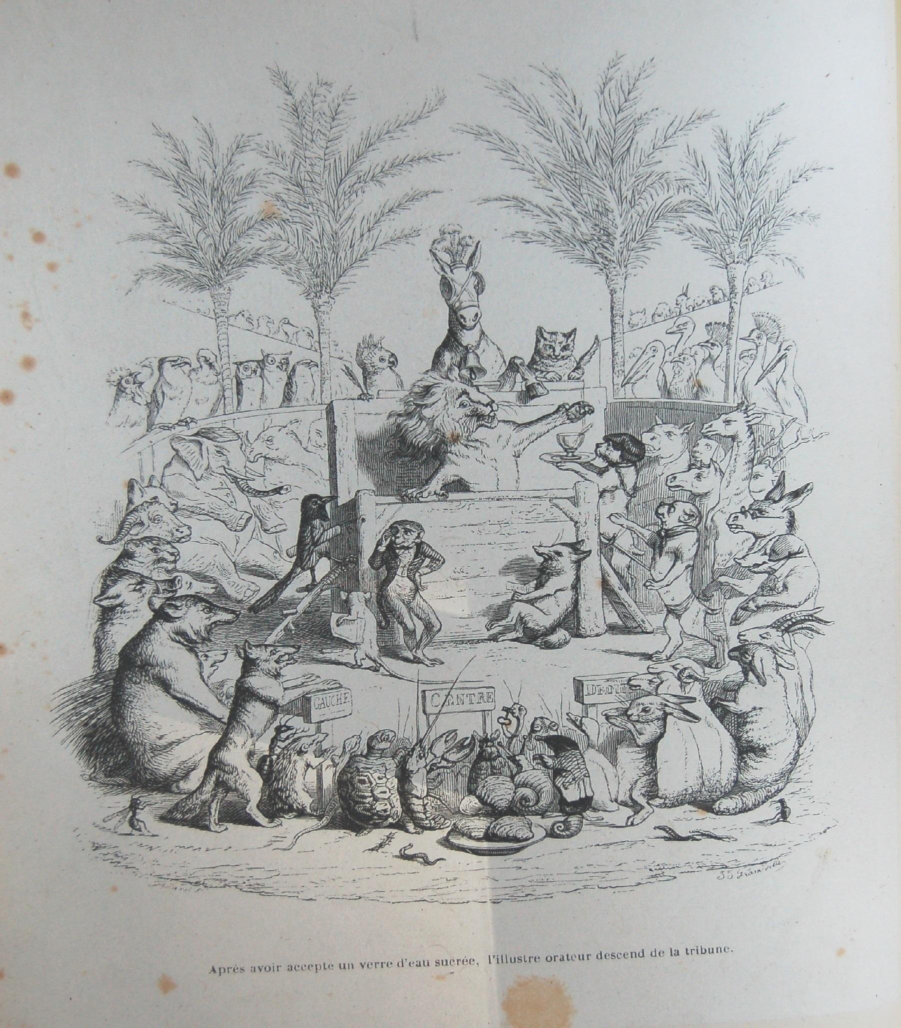 Grandville - illustration pour les